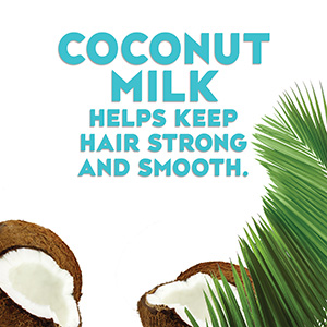 Modal Content Coconut Milk cdt