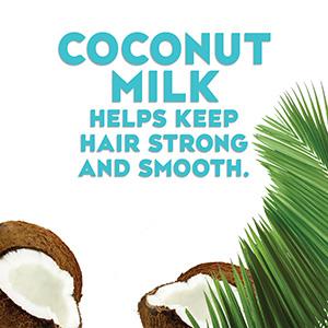 Modal Content Coconut Milk shp