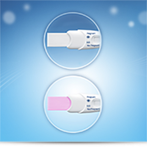 Rapid Detection Pregnancy Test, Kit Of 1 Test